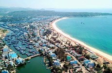Bình Định: Công bố Nghị quyết về việc thành lập thị xã Hoài Nhơn