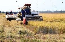 Ứng dụng công nghệ cao thúc đẩy ngành nông nghiệp phát triển vượt bậc