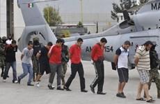 Mexico phong tỏa gần 2.000 tài khoản của băng nhóm ma túy