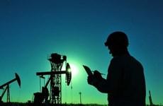 Giá dầu thế giới đã tăng trở lại trong phiên giao dịch 10/6