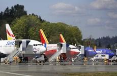 Boeing đối mặt thách thức mới trong nỗ lực 'cứu' 737 MAX