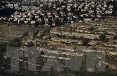 Palestine đề nghị LHQ thảo luận kế hoạch của Israel sáp nhập Bờ Tây