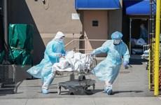 Tình hình dịch COVID-19 sáng 17/6: Hơn 445.000 người thiệt mạng