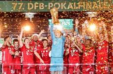 Bayern Munich lần thứ 20 đăng quang Cúp Quốc gia Đức