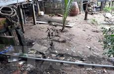 An Giang: Răn nứt bờ Tây sông Hậu, 11 hộ dân phải di dời khẩn cấp