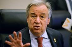 LHQ kêu gọi cộng đồng đoàn kết chống khủng bố trong bối cảnh dịch bệnh