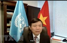 Hội đồng Bảo an LHQ họp về hoạt động hòa bình và quyền con người