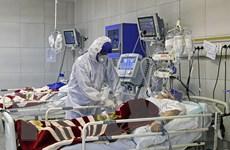 Tổ chức Y tế thế giới quan ngại về tốc độ lây lan của đại dịch