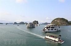Từ ngày 10/7, giảm 50% phí tham quan lưu trú trên vịnh Hạ Long