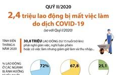 [Infographics] 2,4 triệu lao động bị mất việc làm do dịch COVID-19