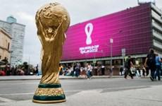Vòng chung kết World Cup 2022 sẽ diễn ra vào mùa Đông