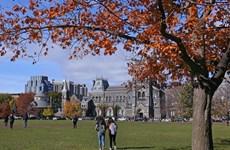 Canada: Sinh viên quốc tế không được nhập cảnh nếu nhận visa sau 18/3