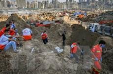 Vụ nổ ở Beirut: Nhiều nạn nhân người nước ngoài chưa được nhận diện