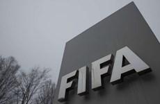 FIFA thông báo hủy các trận đấu quốc tế ngoài châu Âu