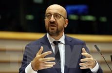 EU ủng hộ đối thoại hòa bình nhằm tháo gỡ tình hình Belarus