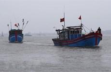 Thông tin mới nhất tình hình ngư dân Việt Nam tại Malaysia, Indonesia