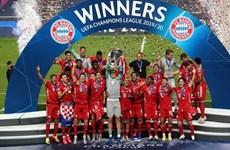 Video cận cảnh Bayern Munich lần thứ 6 lên ngôi Champions League