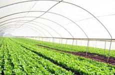 Hơn 840 tỷ đồng thực hiện dự án thực phẩm nông nghiệp an toàn