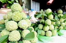 Thị trường ngày lễ Vu Lan: Thực phẩm chay 'được mùa' kinh doanh