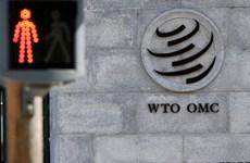 WTO đối mặt khó khăn sau khi ông Azevedo rời vị trí 'thuyền trưởng'
