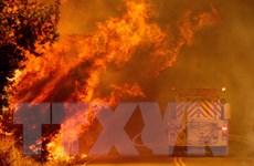 Cháy rừng ở Tây Ban Nha và Mỹ, hàng chục nghìn người phải sơ tán