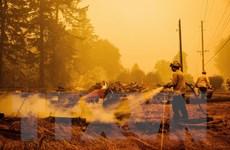 Mỹ: Cháy rừng tiếp tục hoành hành tại bang California và Oregon