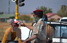 Chuyên gia: Dịch bệnh ở nhiều nước châu Phi đạt đỉnh sớm hơn dự báo