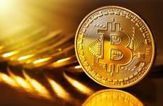 Tiền điện tử Bitcoin có thể tăng lên 100.000 USD/bitcoin vào năm 2025