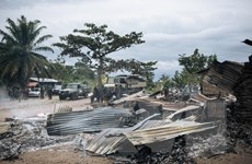 Việt Nam đề cao đối thoại, hòa giải trong giải quyết xung đột ở Congo