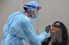 Tình hình dịch bệnh COVID-19 sáng 8/10: Hơn 36,3 triệu ca nhiễm