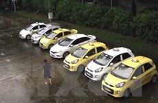 Tạm giữ 7 tài xế taxi 'dù' để điều tra về hành vi đuổi đánh một tài xế