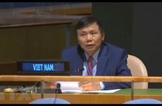Việt Nam cam kết đóng góp tích cực vào các hoạt động gìn giữ hòa bình