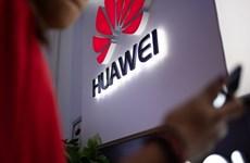 Nhật Bản, Hàn Quốc có thể không cấm Huawei theo yêu cầu của Mỹ