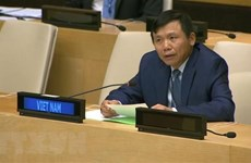 Việt Nam kêu gọi các nước tôn trọng nguyên tắc giải quyết hòa bình