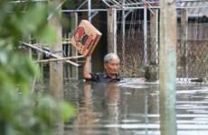Kiểm tra và xử lý nghiêm đối tượng có hành vi trục lợi do mưa lũ