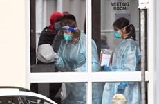 Tình hình dịch bệnh COVID-19 tại Australia, Hàn Quốc và Trung Quốc