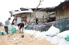 Phú Yên, Khánh Hòa sơ tán hàng chục nghìn người ra khỏi vùng nguy hiểm
