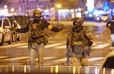 Vụ xả súng tại Áo: Bắt giữ 16 đối tượng tình nghi liên quan