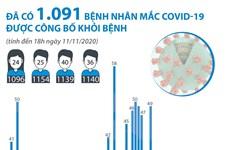 [Infographics] 1.091 bệnh nhân mắc COVID-19 được công bố khỏi bệnh