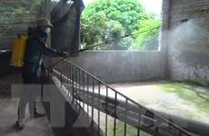 Tiền Giang: Công bố dịch bệnh dịch tả lợn châu Phi tại xã Tân Thới