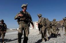 Tổng thống Trump ra lệnh rút 2.500 binh lính Mỹ khỏi Afghanistan, Iraq