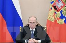 Tổng thống Nga Putin đề xuất hợp tác đấu tranh với tội phạm mạng