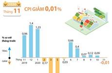 [Infographics] CPI tháng 11/2020 giảm 0,01% so với tháng trước