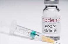 Moderna có kế hoạch cung cấp hơn 100 triệu liều vắcxin vào năm 2021