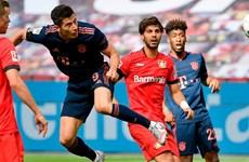 Bundesliga: Bayer Leverkusen và Bayern Munich 'đại chiến' vì ngôi đầu