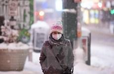 Tình hình dịch COVID-19 ngày 19/12: Thế giới có hơn 75,9 triệu ca mắc