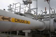 Giá dầu thô của Mỹ và giá dầu Brent cùng giảm phiên đầu tuần 28/12