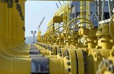 Nga muốn xúc tiến dự án tuyến đường ống 'Sức mạnh Siberia-2'
