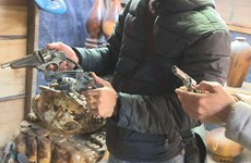 Đắk Lắk: Bắt giữ một đối tượng trộm cắp và tàng trữ vũ khí