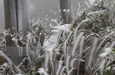 Không khí lạnh suy yếu dần, Bắc Bộ duy trì rét đậm, vùng núi rét hại